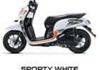 sporty white scoopy new 2017 trans
