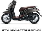 stylish brown scoopy new 2017 trans